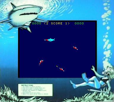 sharkatt