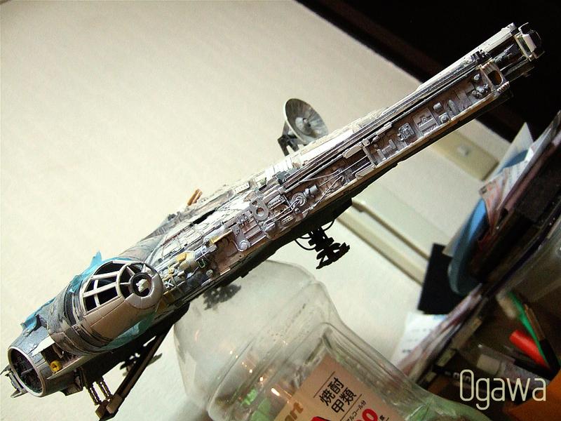 Ogawa_falcon02
